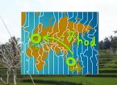 Časový posun mezi Bali a ČR je 7 hodin