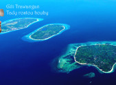 Gili Trawangan. Na první pohled tropický ráj, na druhý houbový ráj